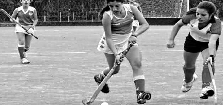 El hockey de Hurling